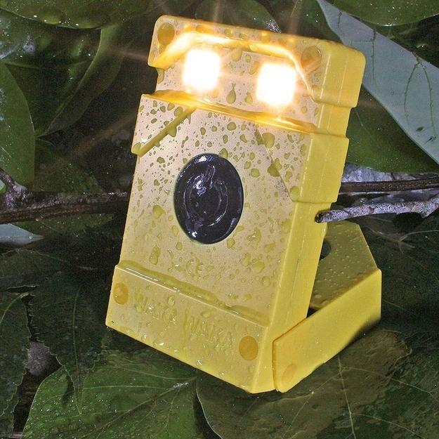 enhanced-buzz-16073-1372197595-15