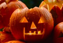 Halloween events in the Peak District